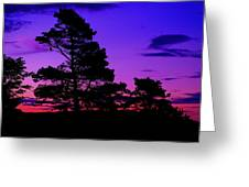 Sunrise At Point Pleasant Park Greeting Card
