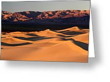 Sunrise At The Mesquite Sand Dunes Greeting Card