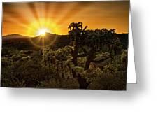 Sunrise Done With An Arizona Flare Greeting Card