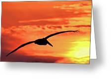 Sunrise Fight Greeting Card