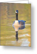 Sunrise Goose Greeting Card