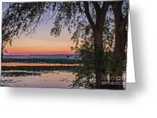 Sunrise Haze Greeting Card