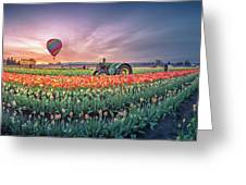 Sunrise, Hot Air Balloon And Moon Over The Tulip Field Greeting Card