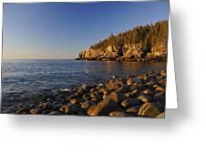 Sunrise In Acadia Greeting Card