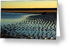 Sunrise In Gold Greeting Card