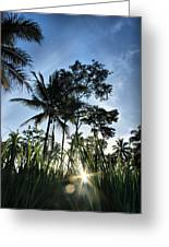 Sunrise In My Place  Greeting Card