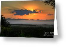 Sunrise In The Swamp-3 Greeting Card