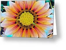 Sunrise Magic Greeting Card
