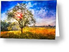 Sunrise Meadow Greeting Card