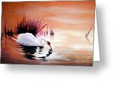 Sunrise On Swan Lake Greeting Card