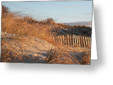 Sunrise On The Dunes Greeting Card