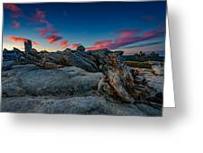 Sunrise On The Jeffrey Pine Greeting Card