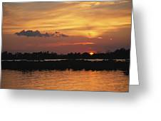 Sunrise Over Delacroix Island Greeting Card by Medford Taylor
