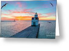 Sunrise Over Lake Michigan Scenic Harbor, Lighthouse With Seagulls. Greeting Card