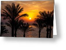 Sunrise Over The Red Sea Greeting Card by Jane Rix
