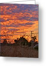 Sunrise Over The Wheat Fields Greeting Card