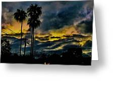 Sunrise Palms Greeting Card