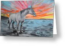 Sunrise Pony Greeting Card