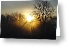 Sunrise Rays Greeting Card