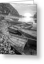 Sunrise Rowboats  In Black And White Greeting Card