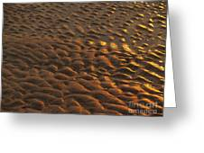 Sunrise Sand Patterns At Hunting Island Greeting Card