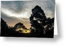 Sunrise Silhouettes Greeting Card