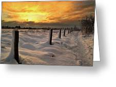 Sunrise Snow Fields Greeting Card