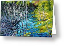 Sunrise Swamp Greeting Card