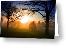 Sunrise Through Trees Greeting Card