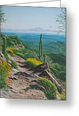 Sunrise Trail Greeting Card