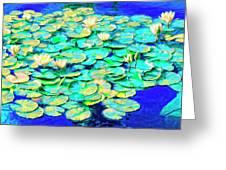 Sunrise Waterlilies Greeting Card