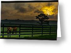 Sunrise With Horses Greeting Card