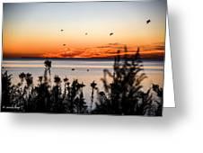 Sunrise1 Greeting Card