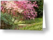 Sun's Grace Greeting Card