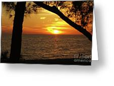 Sunset 2 Greeting Card by Megan Cohen