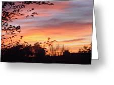 Sunset 31 Greeting Card