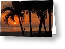 Sunset 36 Greeting Card