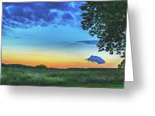 Sunset And Flowers Greeting Card