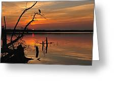 Sunset And Heron Greeting Card