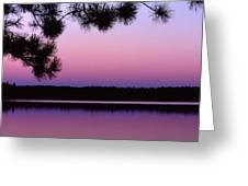 Sunset And Pine 2 Greeting Card