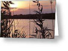 Sunset And Water Greeting Card