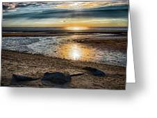 Sunset At Brewster Flats Greeting Card