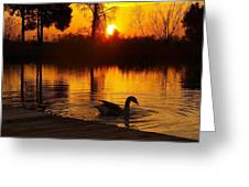 Sunset At Copper Canyon Ranch Greeting Card