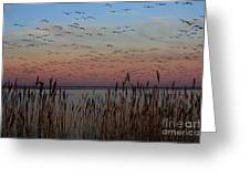 Sunset At Forsythe Greeting Card