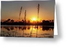 Sunset At Gator Hole 3 Greeting Card