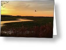 Sunset At Holkham Today  #landscape Greeting Card