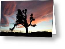 Sunset At Joshua Tree Greeting Card