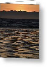 Sunset At Kenai Beach Greeting Card