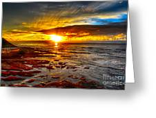 Sunset At Low Tide Greeting Card