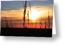 Sunset At Monument Hill Greeting Card